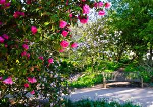 Jardin l 39 anglaise comment cr er un jardin paysager for Reglementation entretien jardin